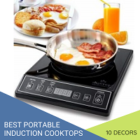 best portable induction cooktops 2021